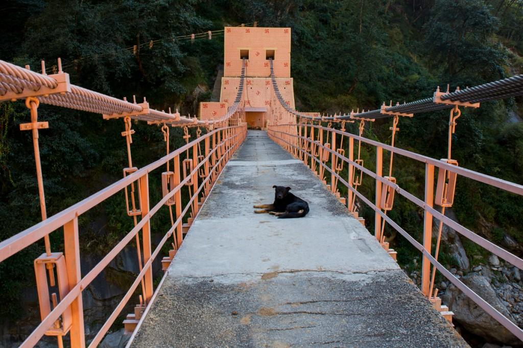 Suspension bridge at NandaPrayag en route to Badrinath. October 2015. ©robertmoses
