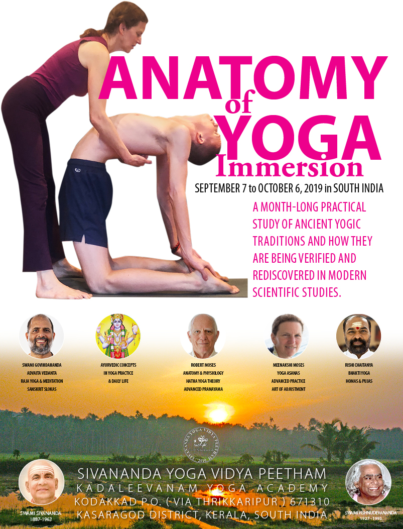 Anatomy Of Yoga Immersion India 2019 Namarupa